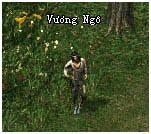NPC Dược Phẩm - Vương Ngô